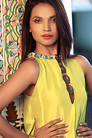 Aamina Sheikh is a well-known face of the Pakistani fashion and entertainment Industry. In just a few years she has made her mark in both th