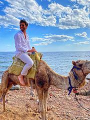 Abdelrahman Shoura Model
