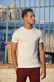 Ahmed Ammar Model