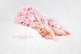 Alina Rodionova newborn photographer. Work by photographer Alina Rodionova demonstrating Baby Photography.Baby Photography Photo #43524