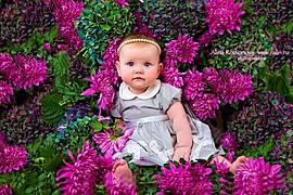 Alina Rodionova newborn photographer. Work by photographer Alina Rodionova demonstrating Baby Photography.Baby Photography Photo #43643
