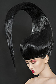 Arnaud Prevost hair stylist (coiffeur). Work by hair stylist Arnaud Prevost demonstrating Creative Hair Styling.Creative Hair Styling Photo #73427