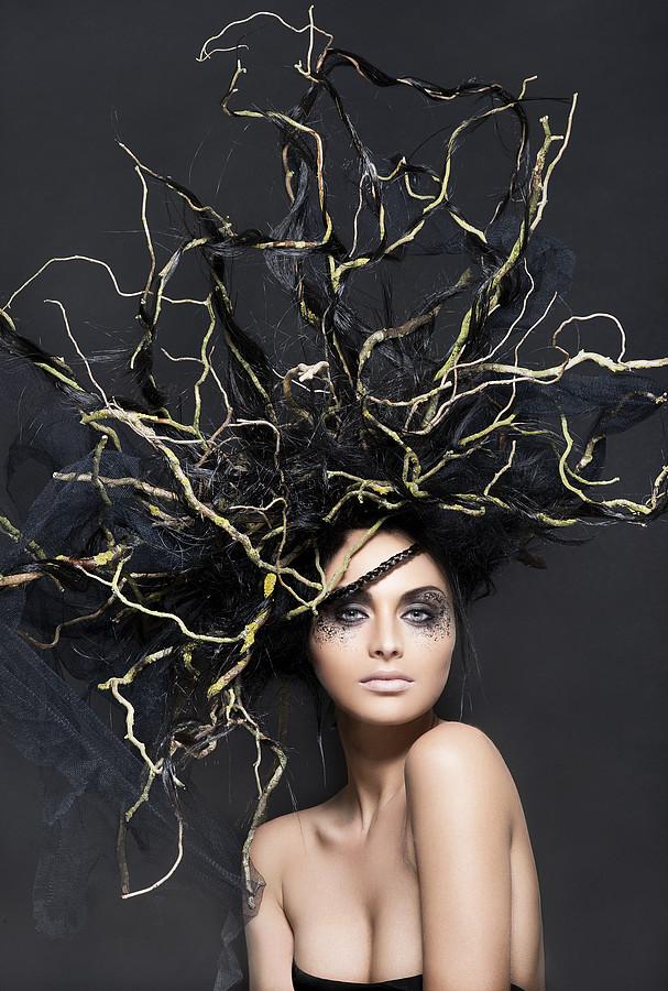 Arnaud Prevost hair stylist (coiffeur). Work by hair stylist Arnaud Prevost demonstrating Creative Hair Styling.Creative Hair Styling Photo #73426