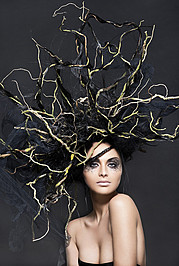 Arnaud Prevost hair stylist (coiffeur). Work by hair stylist Arnaud Prevost demonstrating Creative Hair Styling.Creative Hair Styling Photo #73426