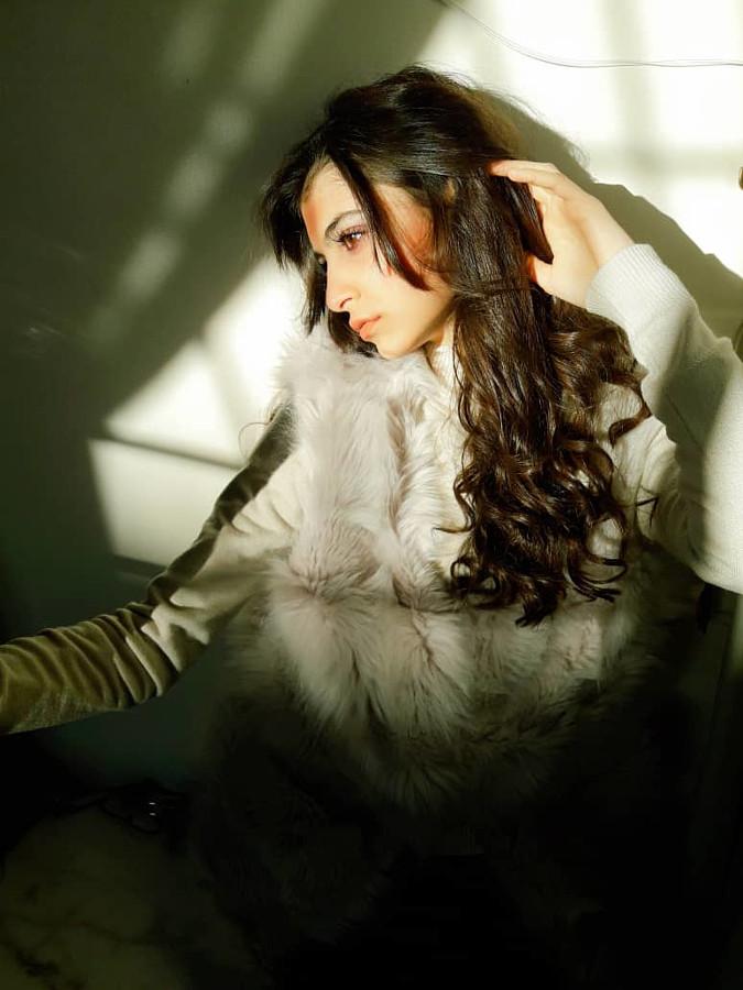 Buthena Hajjar Model