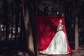Edvina Meta photographer (fotograf). Work by photographer Edvina Meta demonstrating Wedding Photography.Wedding Photography Photo #186297