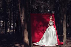 Edvina Meta photographer (fotograf). Work by photographer Edvina Meta demonstrating Wedding Photography.Wedding Photography Photo #186297