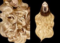 Elsa Jolie hair stylist (coiffeur). Work by hair stylist Elsa Jolie demonstrating Fashion Hair Styling.Fashion Hair Styling Photo #64345