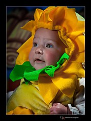 Gaetano Rossi wedding photographer. Work by photographer Gaetano Rossi demonstrating Baby Photography.Baby Photography Photo #92203