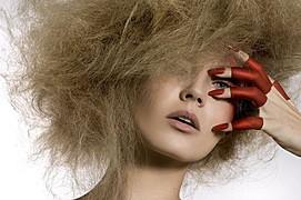 Guilaine Frichot makeup artist (maquilleur). Work by makeup artist Guilaine Frichot demonstrating Beauty Makeup.Beauty Makeup Photo #48492