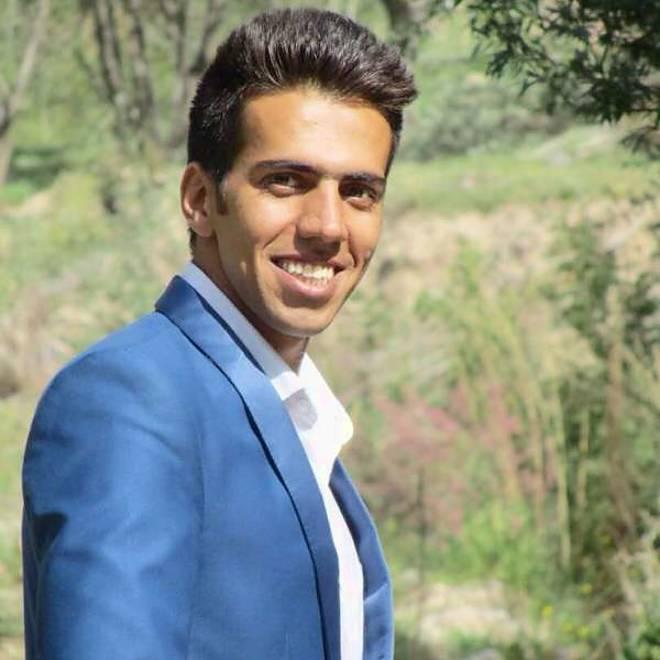 Hamid Sanayei Model