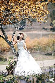 Khanh Antoniblue photographer. Work by photographer Khanh Antoniblue demonstrating Wedding Photography.Wedding Photography Photo #103068