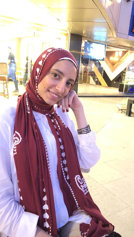 Mai Hisham Model