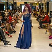 Nayanka Singh Model