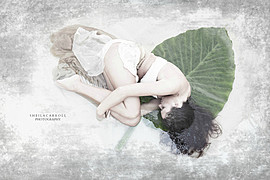 Sheila Carroll photographer. photography by photographer Sheila Carroll. Photo #119523