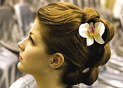 Sofia Pastro hair stylist. Work by hair stylist Sofia Pastro demonstrating Fashion Hair Styling.Fashion Hair Styling Photo #59784