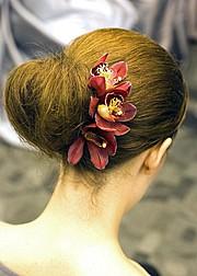 Sofia Pastro hair stylist. hair by hair stylist Sofia Pastro. Photo #59786