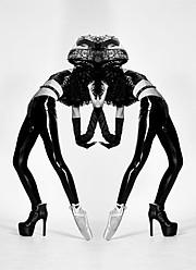 Tamzen Holland fashion stylist. styling by fashion stylist Tamzen Holland.Editorial Styling Photo #94957