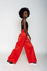 Triza Mbali Model